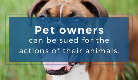 Pet owners can be sued for the actions of their animals.