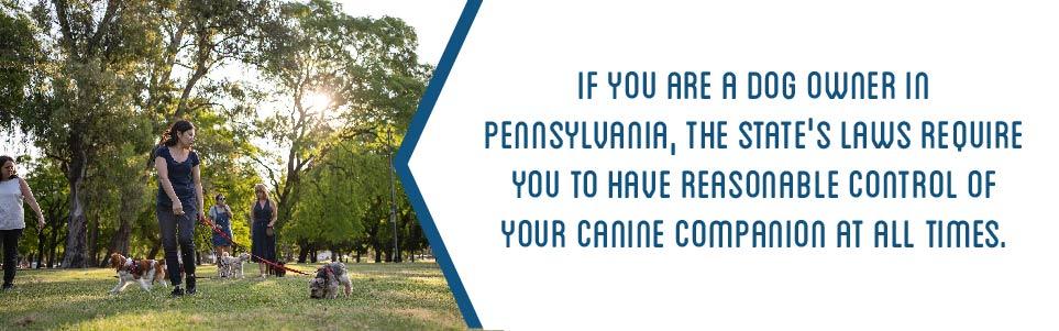 Pennsylvania's Confinement Statute